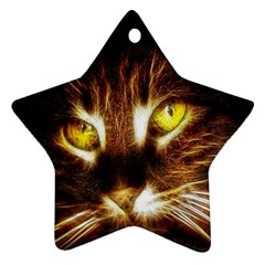 Cat Face Star Ornament (two Sides)