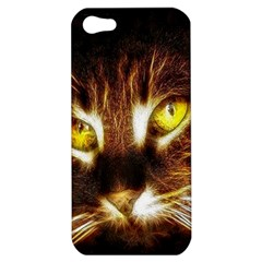 Cat Face Apple Iphone 5 Hardshell Case by BangZart