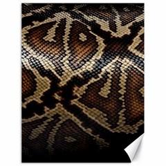 Snake Skin Olay Canvas 18  X 24