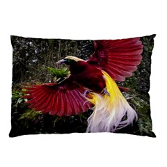 Cendrawasih Beautiful Bird Of Paradise Pillow Case (two Sides)