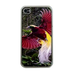 Cendrawasih Beautiful Bird Of Paradise Apple Iphone 4 Case (clear) by BangZart