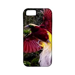 Cendrawasih Beautiful Bird Of Paradise Apple Iphone 5 Classic Hardshell Case (pc+silicone) by BangZart