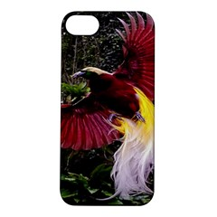 Cendrawasih Beautiful Bird Of Paradise Apple Iphone 5s/ Se Hardshell Case by BangZart
