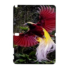 Cendrawasih Beautiful Bird Of Paradise Galaxy Note 1