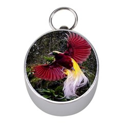 Cendrawasih Beautiful Bird Of Paradise Mini Silver Compasses