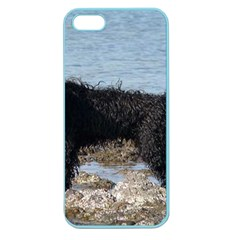 Full 2 Portuguese Water Dog Apple Seamless Iphone 5 Case (color) by TailWags