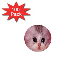 Cat  Animal  Kitten  Pet 1  Mini Buttons (100 Pack)  by BangZart