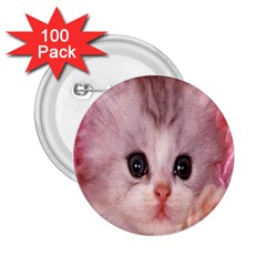 Cat  Animal  Kitten  Pet 2 25  Buttons (100 Pack)