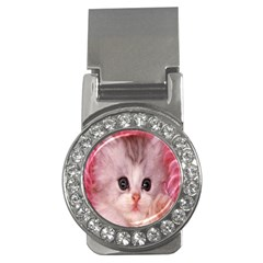 Cat  Animal  Kitten  Pet Money Clips (cz)