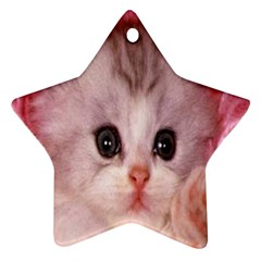 Cat  Animal  Kitten  Pet Star Ornament (two Sides)
