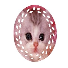Cat  Animal  Kitten  Pet Ornament (oval Filigree) by BangZart