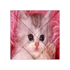 Cat  Animal  Kitten  Pet Acrylic Tangram Puzzle (4  X 4 )
