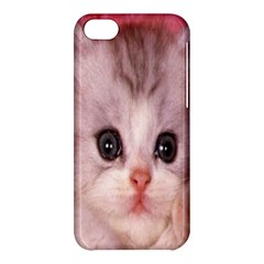 Cat  Animal  Kitten  Pet Apple Iphone 5c Hardshell Case by BangZart