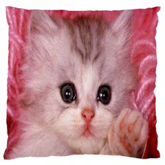 Cat  Animal  Kitten  Pet Standard Flano Cushion Case (two Sides) by BangZart