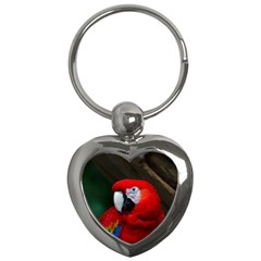 Scarlet Macaw Bird Key Chains (heart)  by BangZart