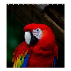 Scarlet Macaw Bird Shower Curtain 66  X 72  (large)