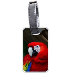 Scarlet Macaw Bird Luggage Tags (two Sides) by BangZart