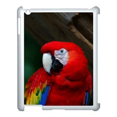 Scarlet Macaw Bird Apple Ipad 3/4 Case (white) by BangZart