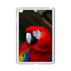 Scarlet Macaw Bird Ipad Mini 2 Enamel Coated Cases