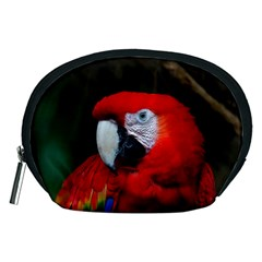 Scarlet Macaw Bird Accessory Pouches (medium)