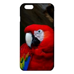 Scarlet Macaw Bird Iphone 6 Plus/6s Plus Tpu Case