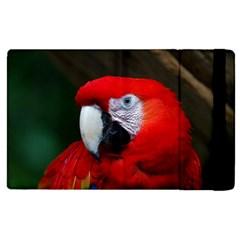 Scarlet Macaw Bird Apple Ipad Pro 9 7   Flip Case