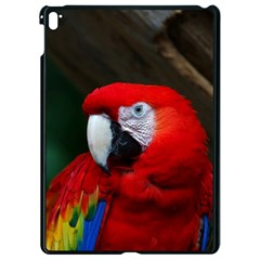 Scarlet Macaw Bird Apple Ipad Pro 9 7   Black Seamless Case by BangZart
