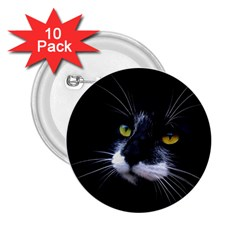 Face Black Cat 2 25  Buttons (10 Pack)