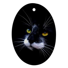 Face Black Cat Oval Ornament (two Sides) by BangZart