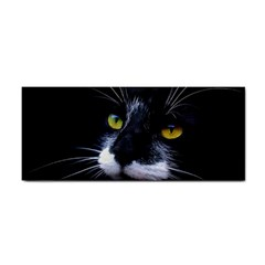 Face Black Cat Cosmetic Storage Cases