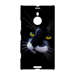 Face Black Cat Nokia Lumia 1520 by BangZart