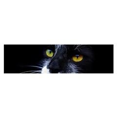Face Black Cat Satin Scarf (oblong) by BangZart