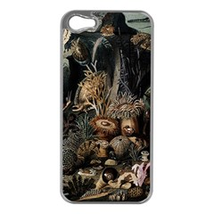 Underwater Apple Iphone 5 Case (silver) by Valentinaart