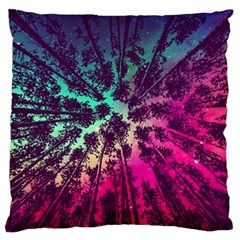 Just A Stargazer Standard Flano Cushion Case (two Sides) by augustinet