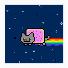Nyan Cat Medium Glasses Cloth (2 Side) by Onesevenart