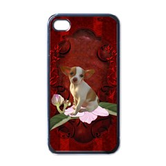 Sweet Little Chihuahua Apple Iphone 4 Case (black) by FantasyWorld7