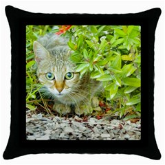 Hidden Domestic Cat With Alert Expression Throw Pillow Case (black) by dflcprints