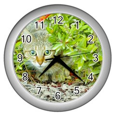 Hidden Domestic Cat With Alert Expression Wall Clocks (silver)  by dflcprints