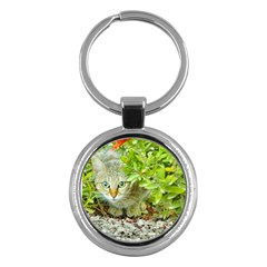 Hidden Domestic Cat With Alert Expression Key Chains (round)  by dflcprints