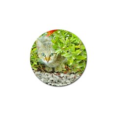 Hidden Domestic Cat With Alert Expression Golf Ball Marker by dflcprints