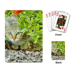 Hidden Domestic Cat With Alert Expression Playing Card by dflcprints