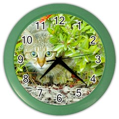 Hidden Domestic Cat With Alert Expression Color Wall Clocks by dflcprints