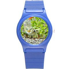 Hidden Domestic Cat With Alert Expression Round Plastic Sport Watch (s) by dflcprints