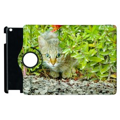 Hidden Domestic Cat With Alert Expression Apple Ipad 2 Flip 360 Case by dflcprints
