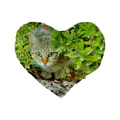 Hidden Domestic Cat With Alert Expression Standard 16  Premium Flano Heart Shape Cushions by dflcprints