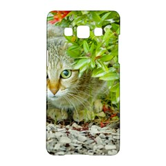 Hidden Domestic Cat With Alert Expression Samsung Galaxy A5 Hardshell Case  by dflcprints