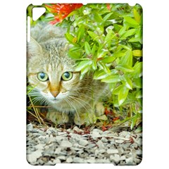 Hidden Domestic Cat With Alert Expression Apple Ipad Pro 9 7   Hardshell Case by dflcprints