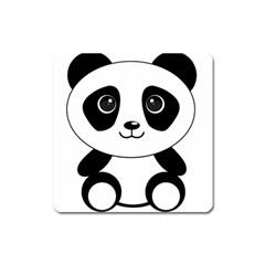 Bear Panda Bear Panda Animals Square Magnet