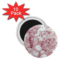 Pink Colored Flowers 1 75  Magnets (10 Pack)  by dflcprints