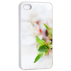 Fragility Flower Petals Tenderness Leaves  Apple Iphone 4/4s Seamless Case (white) by amphoto